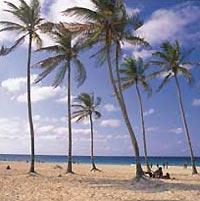 Las Terrazas Sand Beach