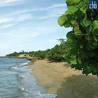 Costa de Caletón Blanco