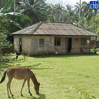 Granja de El Yunque