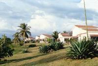 Costa Sur Gardens