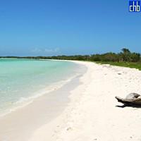 Memories Caribe Hotel plaża