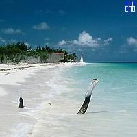 Пляж Кайо Левіса