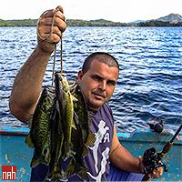 Ribarenje pastrvskog grgeča na jezeru Hanabanilla, Kuba