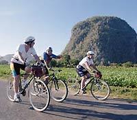 Actividades de bicicleta