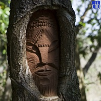 Wood carving in a tree