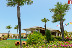 Lush Tropical Front Gardens at Pestana Cayo Coco Hotel