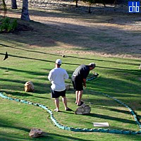 Minigolf At The Playa Caleta Hotel