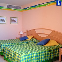 Playa Caleta Hotel Room