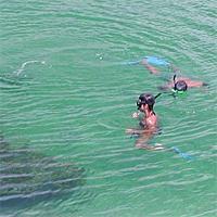 Cayo Las Brujas Snorkeling