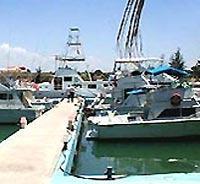 Marine Yacht Tarara