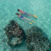 Snorkeling at Iberostar Ensenachos Hotel Beach