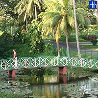 Villa Aguas Claras, Foot bridge
